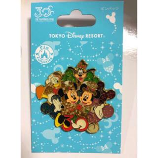 Disney - ディズニーランド 30周年 ミッキー ミニー ピンバッジ