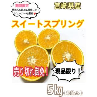 【現品限り!】マル秘みかん❣️スイートスプリング5㎏(送料込み)/果物 みかん(フルーツ)