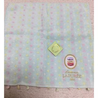 LADUREE - 新品未使用ラデュレのタオルハンカチ 2枚セット トッカジルスチュアートアナスイ