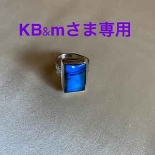 ブラックラブラドライト 指輪 シルバー デザインリング 14号(リング(指輪))