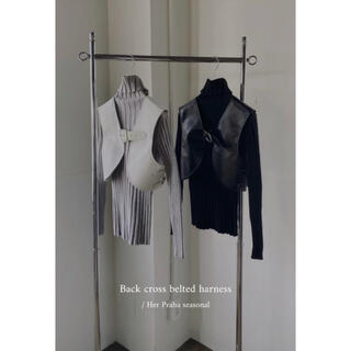 litmus / back cross belted harness