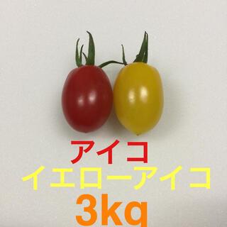 プラム型ミニトマト アイコ、イエローアイコ 3kg(野菜)