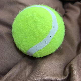 テニスボール(ボール)
