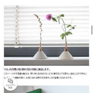 スカンジナビアフォルム ベース コンシリウム   花瓶 一輪挿し(花瓶)