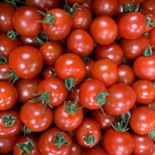 訳ありミニトマト箱込み1キロ(野菜)