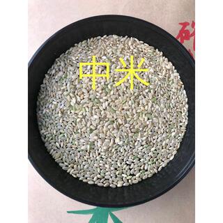 お米SALE!! 新米コシヒカリの「中米」玄米30㎏ 入荷・数量限定です!(米/穀物)