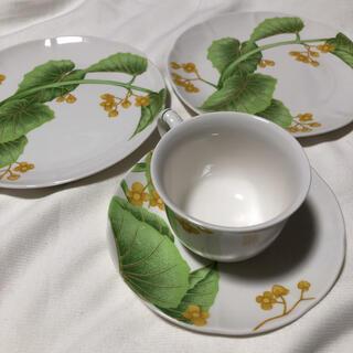 ノリタケ(Noritake)のノリタケ グラフトーン カップ&ソーサー プレート セット 未使用(食器)