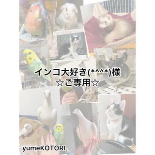 インコ大好き(*^^*)様☆ご専用☆ ガジチャラおもちゃ 小鳥のブランコ(鳥)