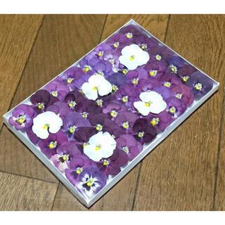 f15 銀の紫陽花が作った可愛い彩りビオラのドライフラワー‼️(ドライフラワー)