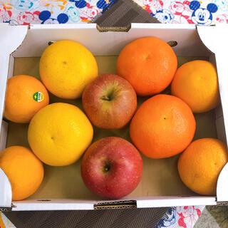 果物詰め合わせセット(フルーツ)
