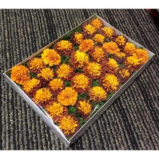 銀の紫陽花が作った希少なマリーゴールドのドライフラワー‼️(ドライフラワー)