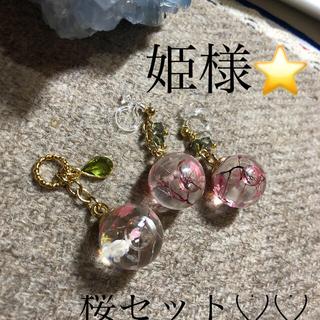 桜セット⭐️⭐️