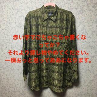 トラサルディ(Trussardi)のTRUSSARDI  玉虫色シャツ(シャツ)