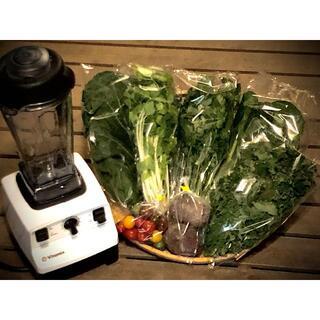 野菜ソムリエ推奨!免疫力を高めるスムージーにおすすめの新鮮野菜8品詰め合せ(野菜)