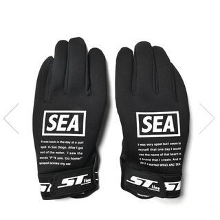 ASHRAM GLOVE WIND AND SEA(手袋)