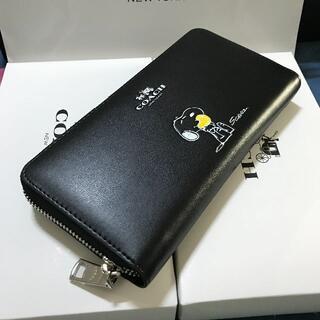 COACH - COACH未使用品 長財布 コーチ財布F53773