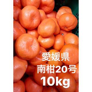 愛媛県 南柑20号 みかん 10kg(フルーツ)