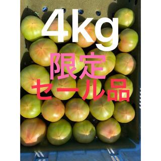 セール品わけありトマト4キロ今季最終(野菜)