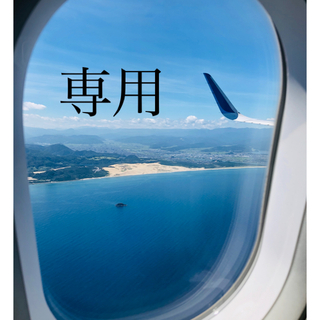 【新品】ヘアクリップ ブラック (バレッタ/ヘアクリップ)