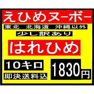 H7 えひめヌーボー はれひめ 少し訳あり 10キロ(フルーツ)