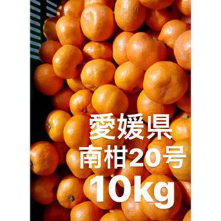 愛媛県 南柑20号 みかん S〜2S  10kg(フルーツ)