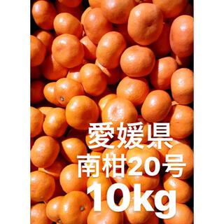 愛媛県 南柑20号 みかん S前後 10kg(フルーツ)