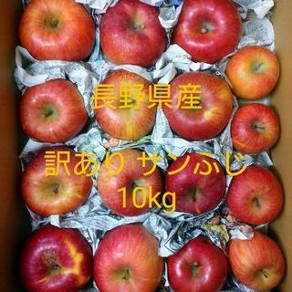⑧長野県産 りんご 訳あり10㎏ サンふじ(フルーツ)