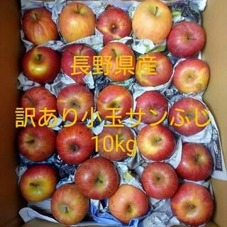 ④長野県産 訳あり 小玉サンふじ10kg(フルーツ)