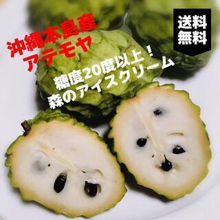 大人気!森のアイスクリーム!甘くとろける!沖縄産 人気のアテモヤ 1kg(フルーツ)