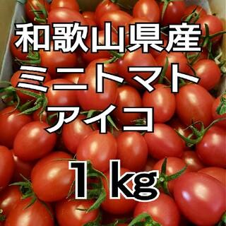 1㎏ 和歌山県産 ミニトマト アイコ(野菜)