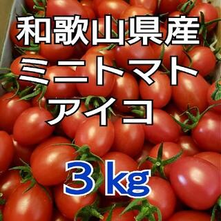 3㎏ 和歌山県産 ミニトマト アイコ(野菜)