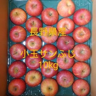 22 長野県産 りんご小玉 10㎏ サンふじ(フルーツ)