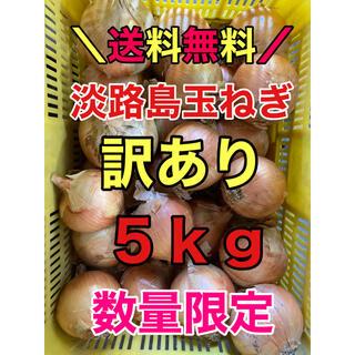 淡路島産玉ねぎ タマネギ 玉葱 5kg 5キロ 訳あり(野菜)