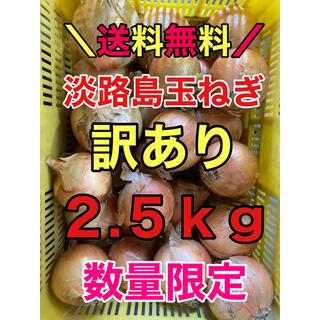淡路島玉ねぎ 玉葱 タマネギ 2.5kg 2.5キロ 訳あり(野菜)