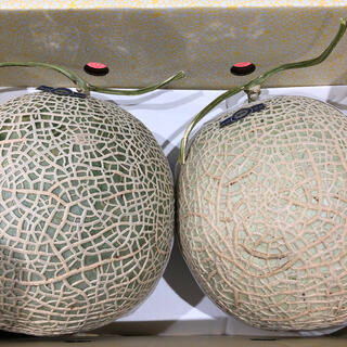 高知県産 温室メロン  2玉  4キロ  AA(フルーツ)