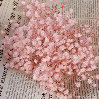 【花材】カスミ草 オーバータイム シャーベットピンク【ハーバリウム等に】(ドライフラワー)
