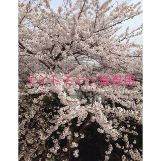 アツギ(Atsugi)の【新品】アツギ フラワーネット柄フットカバー 2足セット(ソックス)