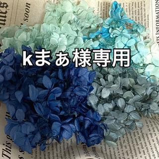 kまぁ様専用  【花材】アジサイ 色々なブルーミックス【ハーバリウム等に】(ドライフラワー)