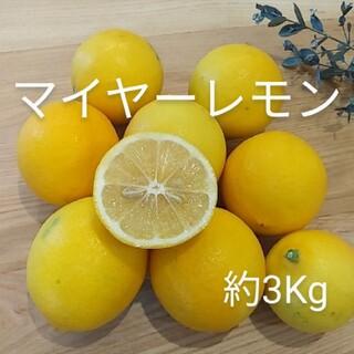 国産マイヤーレモン 約3Kg(フルーツ)