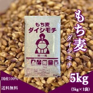 ダイシモチ(米/穀物)
