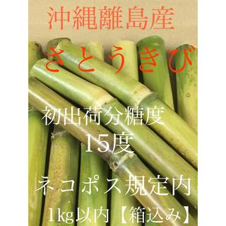さとうきび 沖縄離島産 ネコポス規定内 発送当日収穫 サトウキビ(野菜)