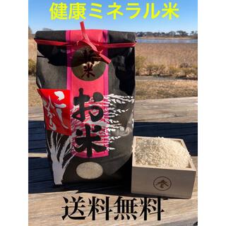 令和2年 群馬県産 美味しい 新米 コシヒカリ 健康 ミネラル米 3キロ (米/穀物)