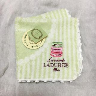 LADUREE - LADUREE ラデュレ タオルハンカチ
