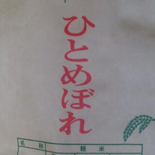 米  ひとめぼれ10㎏(米/穀物)