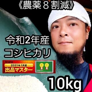 《農薬8割減》新米コシヒカリ10kg②(米/穀物)