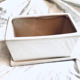 スクエア 鉢(プランター)