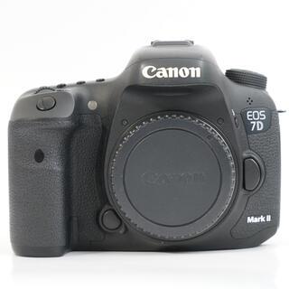 キヤノン(Canon)のCanon EOS 7D Mark2とEF24-105mm f4(デジタル一眼)