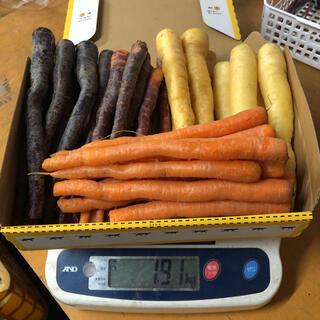 彩りフルーツにんじん先行販売。訳ありB品1.8kg以上。無農薬野菜(野菜)