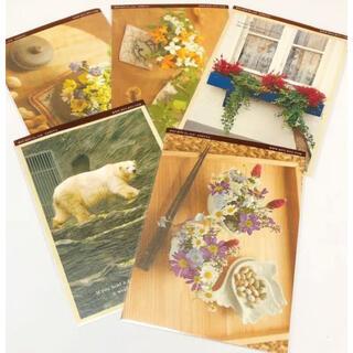 芦屋 ryu-ryu ポストカード  5枚セット