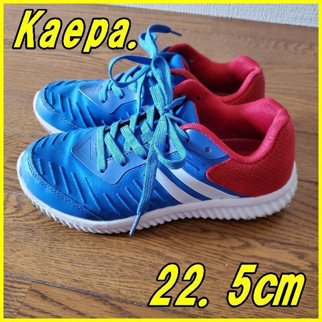 Kaepa(ケイパ)のケイパ Kaepa 3色柄 22.5㎝ ブルーレッド キッズ/ベビー/マタニティのキッズ靴/シューズ(15cm~)(スニーカー)の商品写真